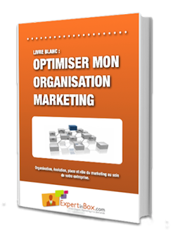 Livre blanc : Organisation marketing